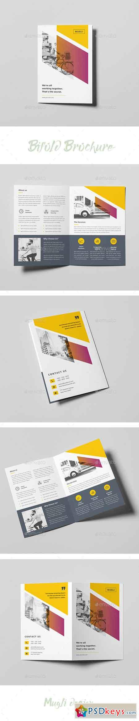 Bifold Brochure 20184697