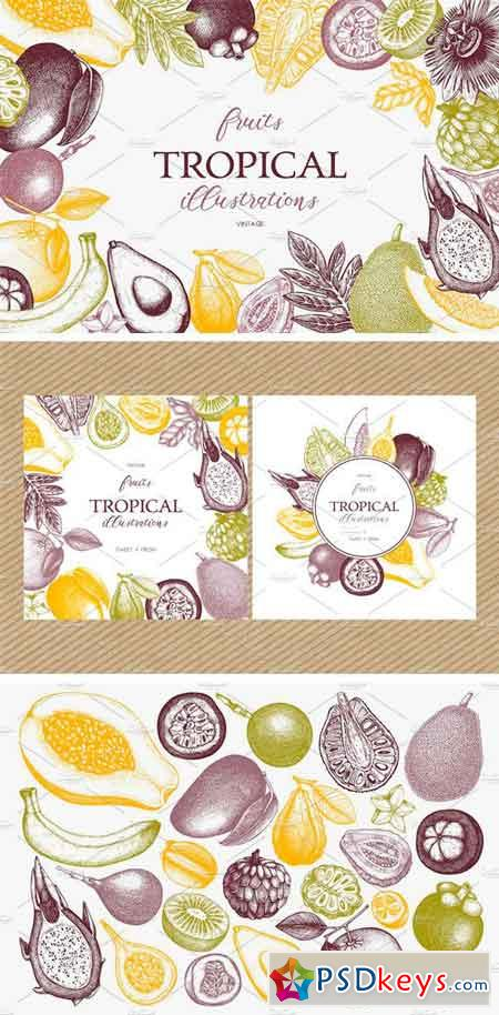 Tropical Fruits Collection 1501322