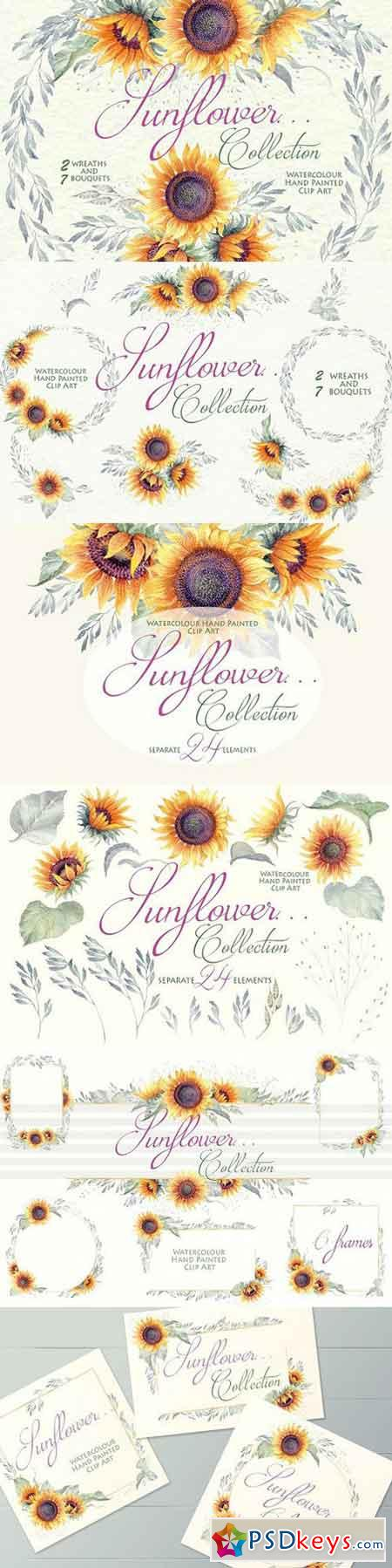Sunflower... - Clipart Collection 1587750