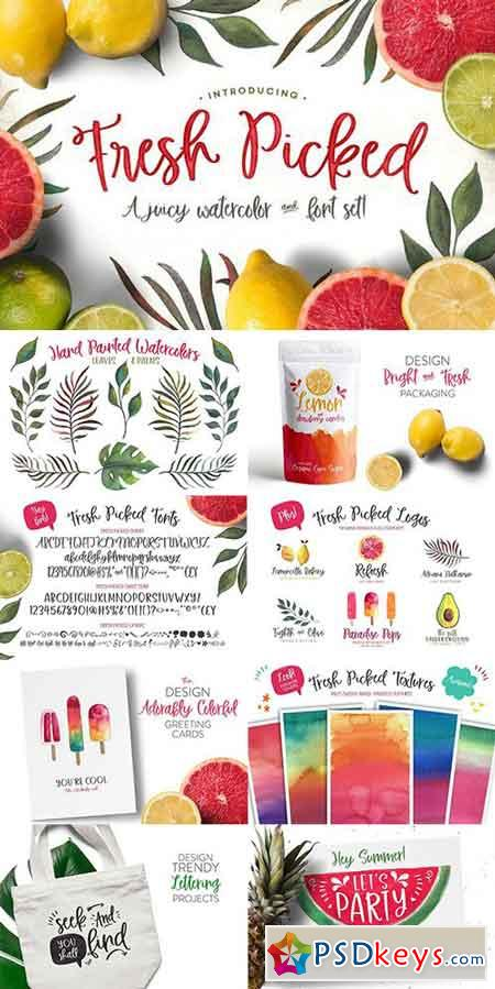 Fresh Picked Watercolor & Font Kit 1658279