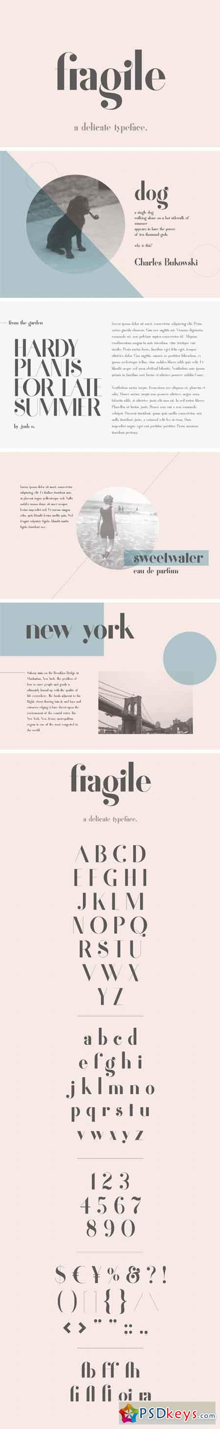 Fragile - A Delicate Typeface 1677372