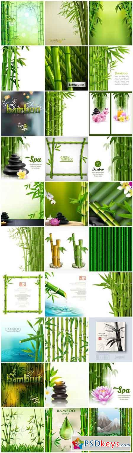 Bamboo Background - 30 Vector