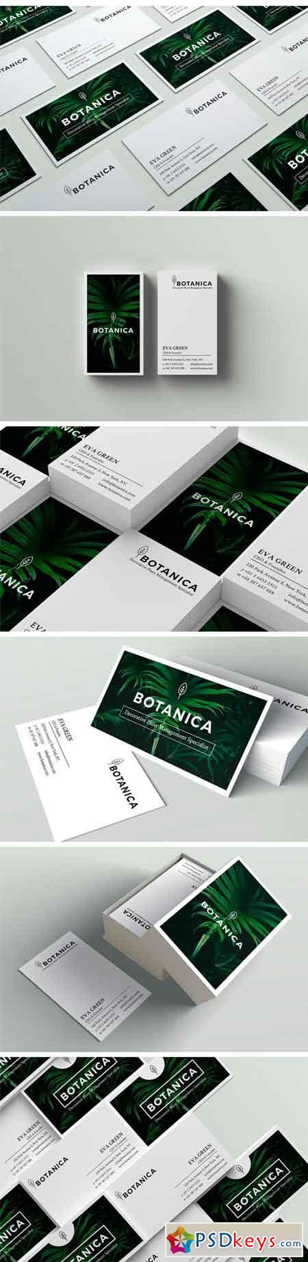 BOTANICA Business Card Template 1682296