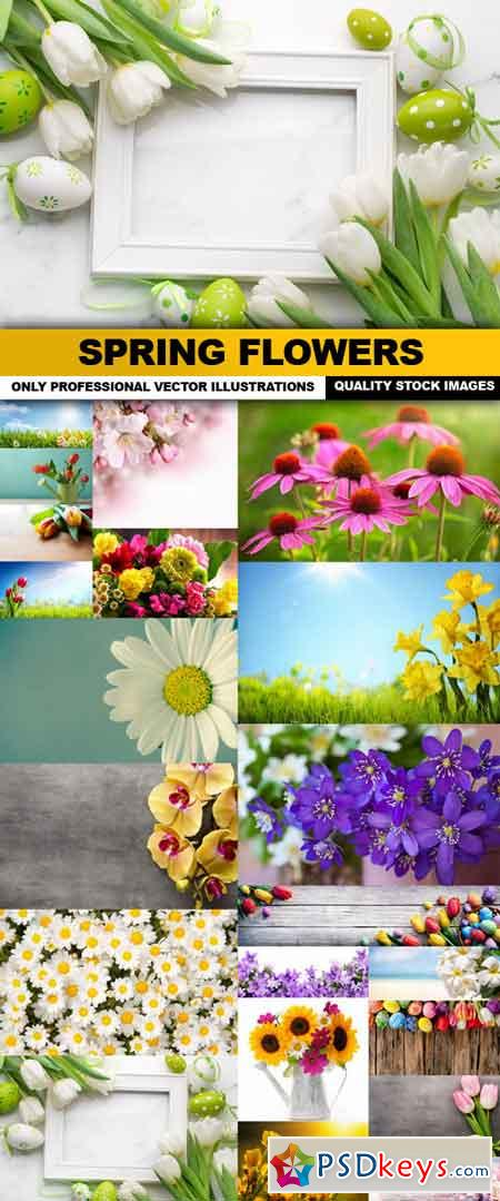 Spring Flowers - 20 HQ Images