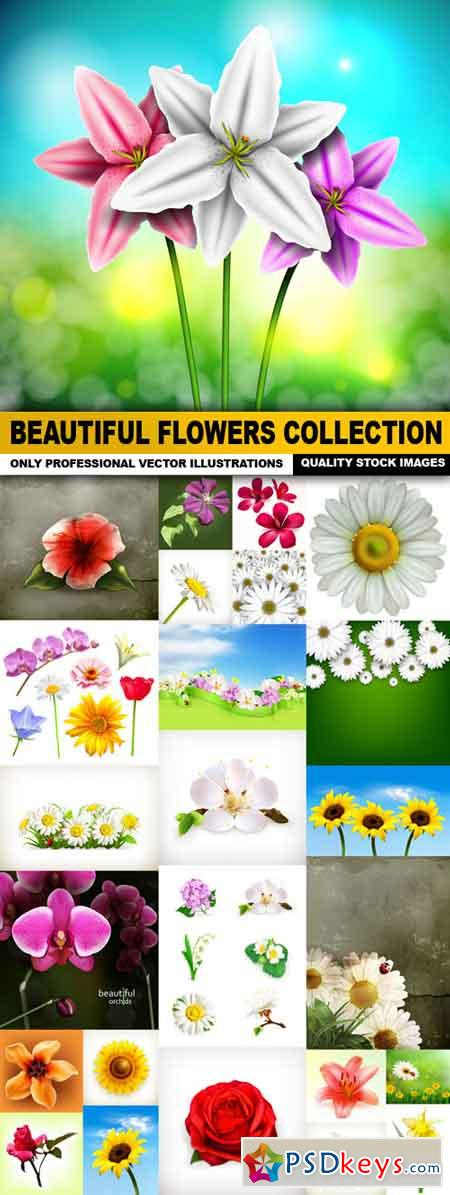 Beautiful Flowers Collection - 25 Vector