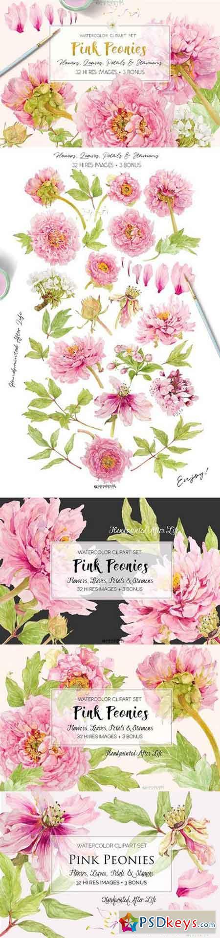 Pink Peonies-Clipart Set 1518921
