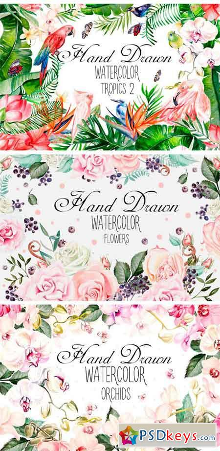 Hand Drawn Watercolor BUNDLE 4 1668274