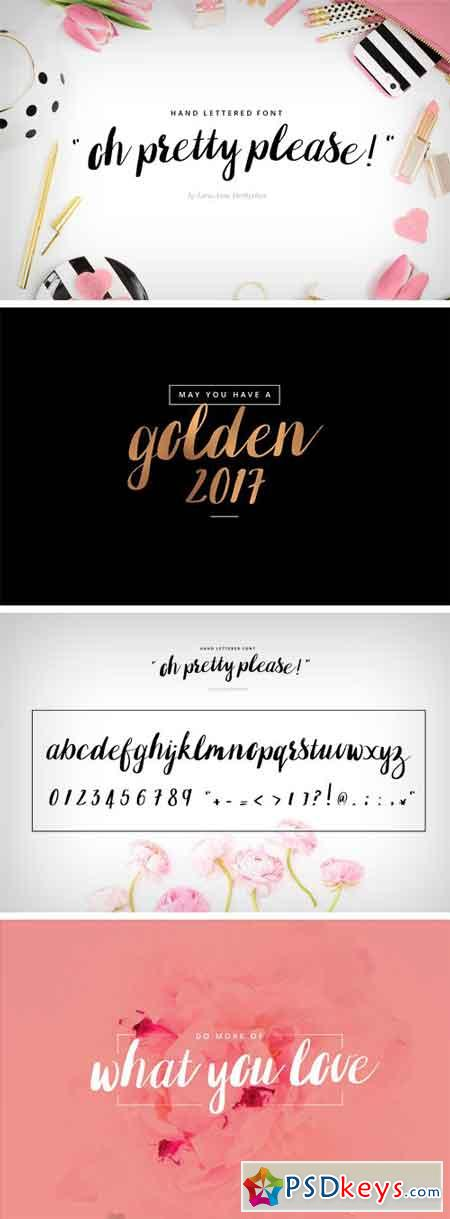 Oh Pretty Please Hand Lettered Font 1709771