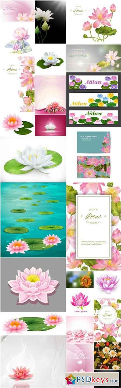 Lotus Flowers - 26 Vector