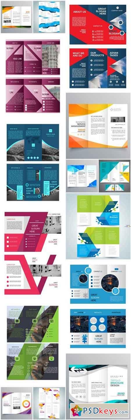 Trifold Brochure Template - 15 Vector