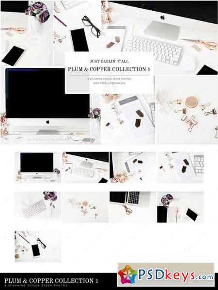Plum Copper Styled Stock Photos 1674669