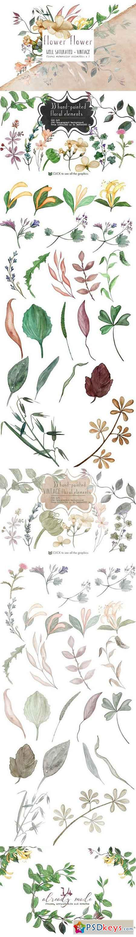 Virginia Wild - Watercolor Duo Pack 1626057