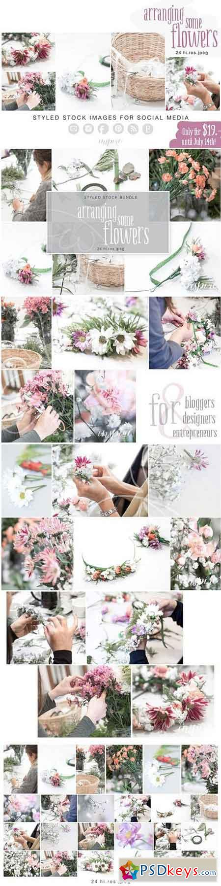Arranging Flowers Hi Res Jpeg Bundle 1664278