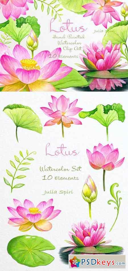 Lotus Watercolor Clip Art 780414