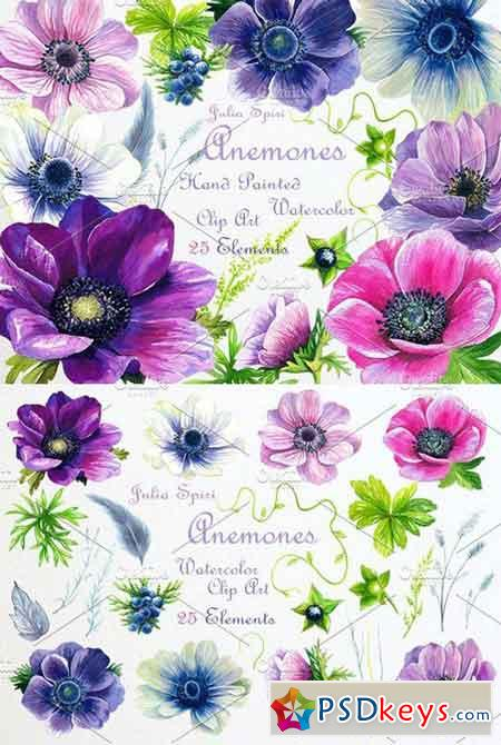 Watercolor Flowers ClipArt. Anemones 1321430
