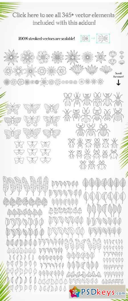 Rainforest Illustration Creator 1778495