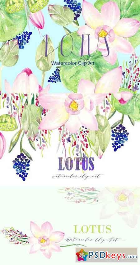 Lotus. Watercolor Clip Art 362613