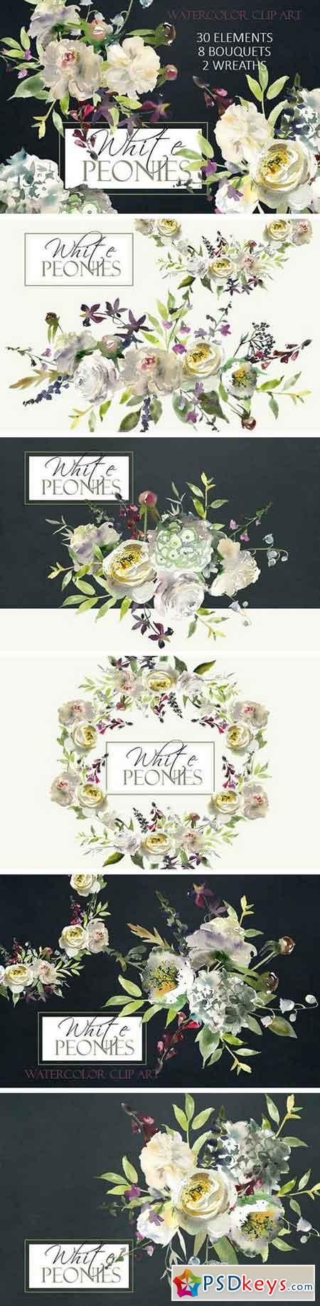 Watercolor White Flowers Clipart 983330