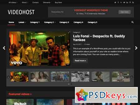 VideoHost - WordPress Video Theme 1862733