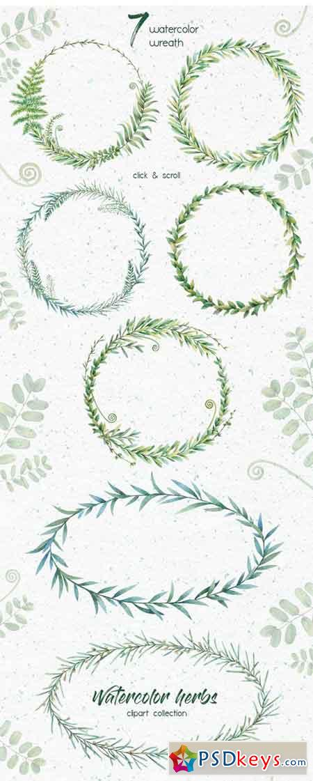 Watercolor Herbs Clipart Collection 1818264