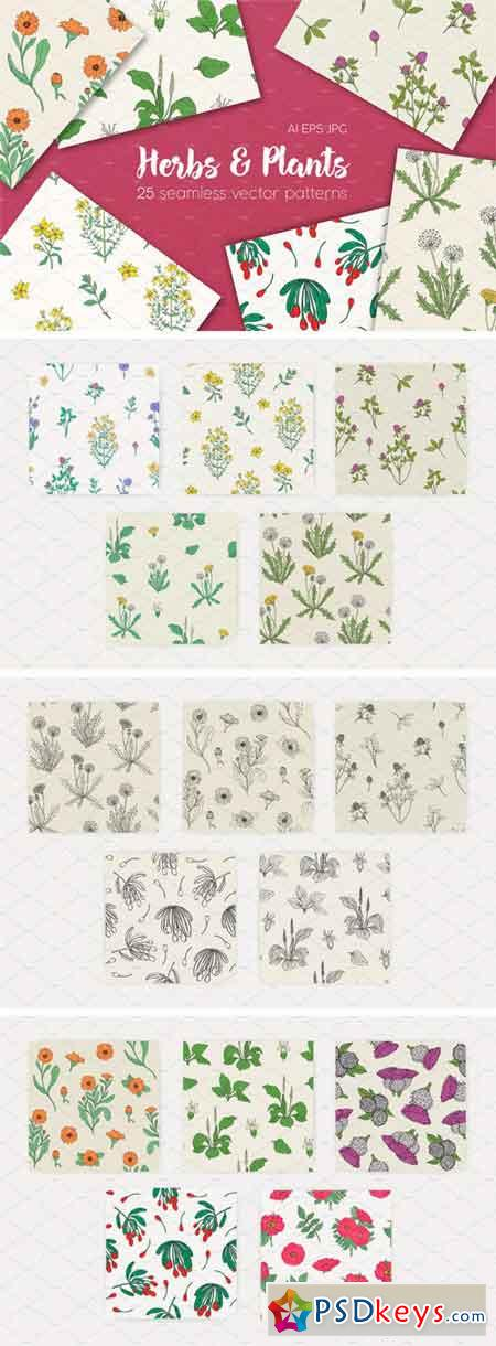 Seamless Patterns of Herbs and Plant 1838525