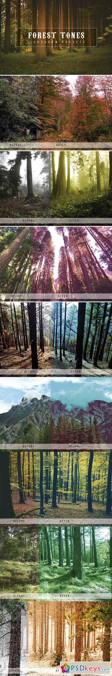 Forest Tone Lightroom Presets 1904563