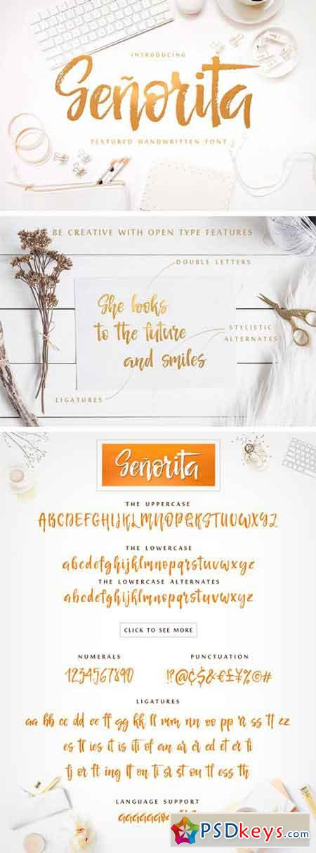 Senorita Handwritten Textured Font 1937996