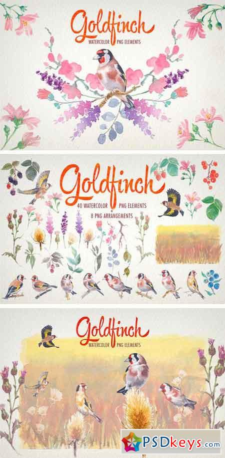Watercolor Goldfinch Bird Clipart 1922106