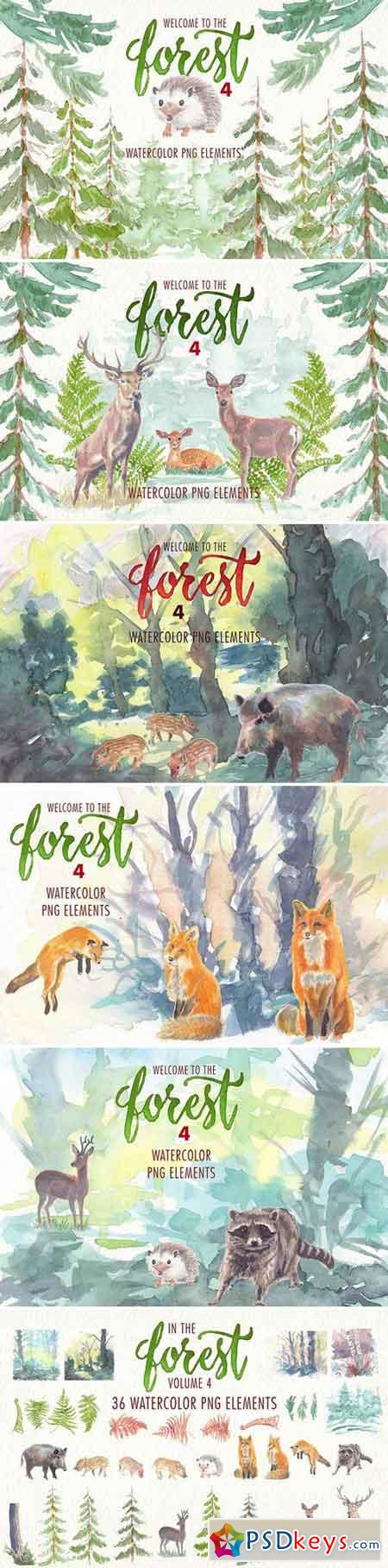 watercolor in the forest clipart 1926459