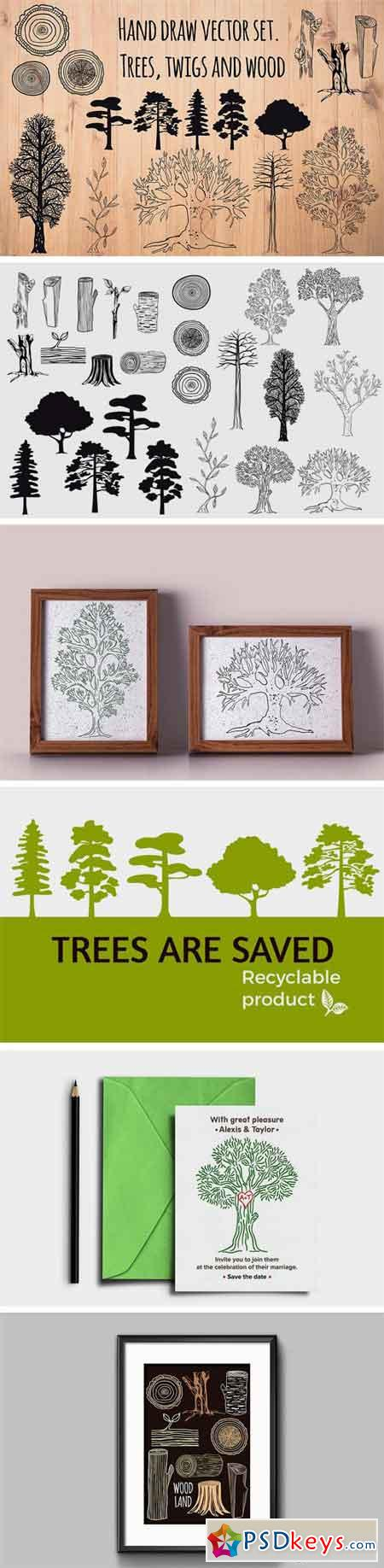 Set of Hand Drawn Trees and Wood 1938745