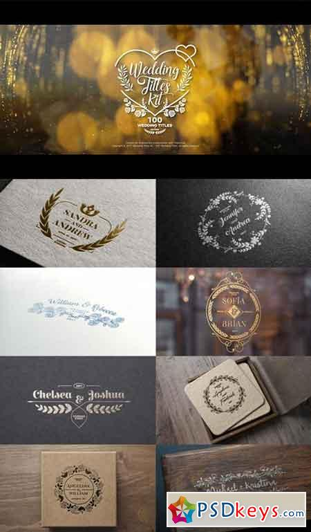 Wedding Titles Kit - 100 Titles 19434063 - After Effects Projects