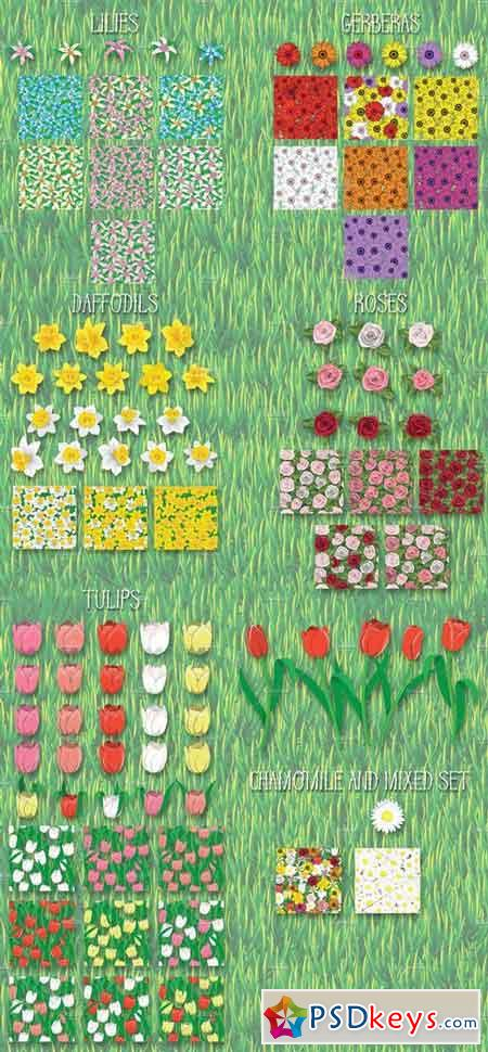 Flowers Vector Graphic Styles 1319738
