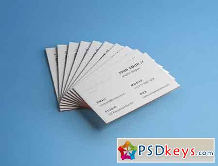 Business Card Brand Mockup Vol 4