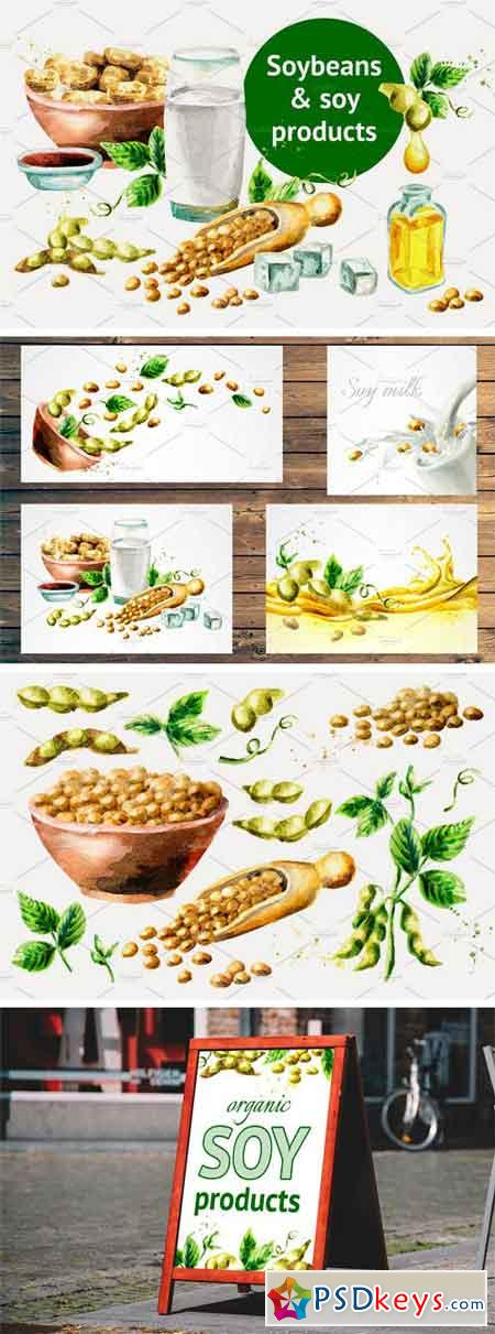 Soybeans & Soy Products. Watercolor 1953001