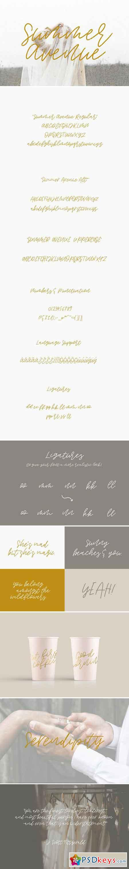 Summer Avenue Font Set 1956361