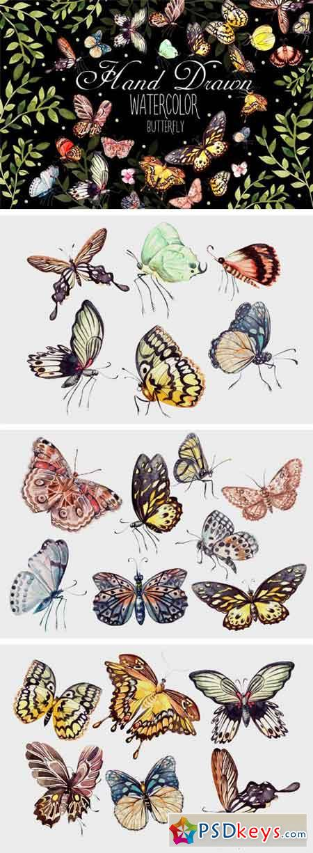 Beautiful Watercolor Butterflies 1952928