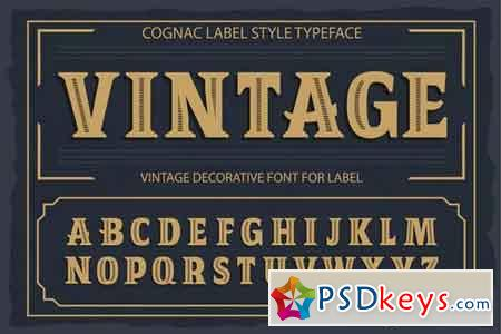 Vintage OTF and vector font 1975357