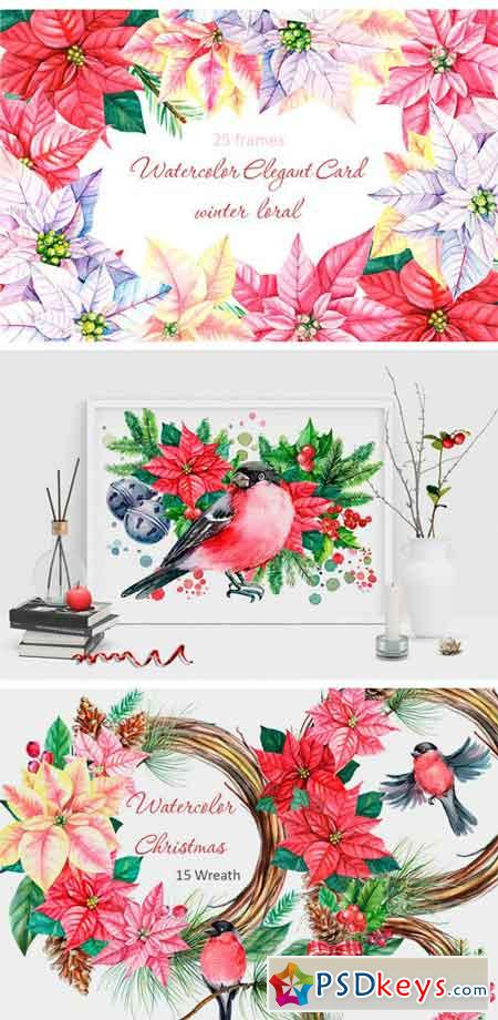 Winter Birds and Floral Illustration 2010561