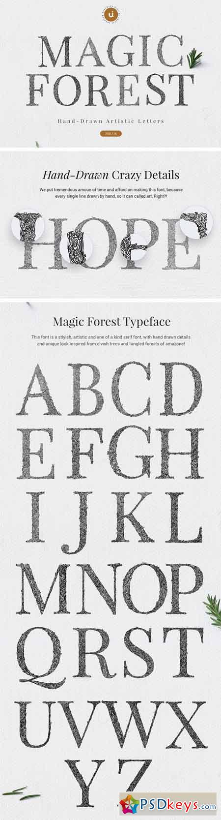 Magic Forest Typeface 2038309