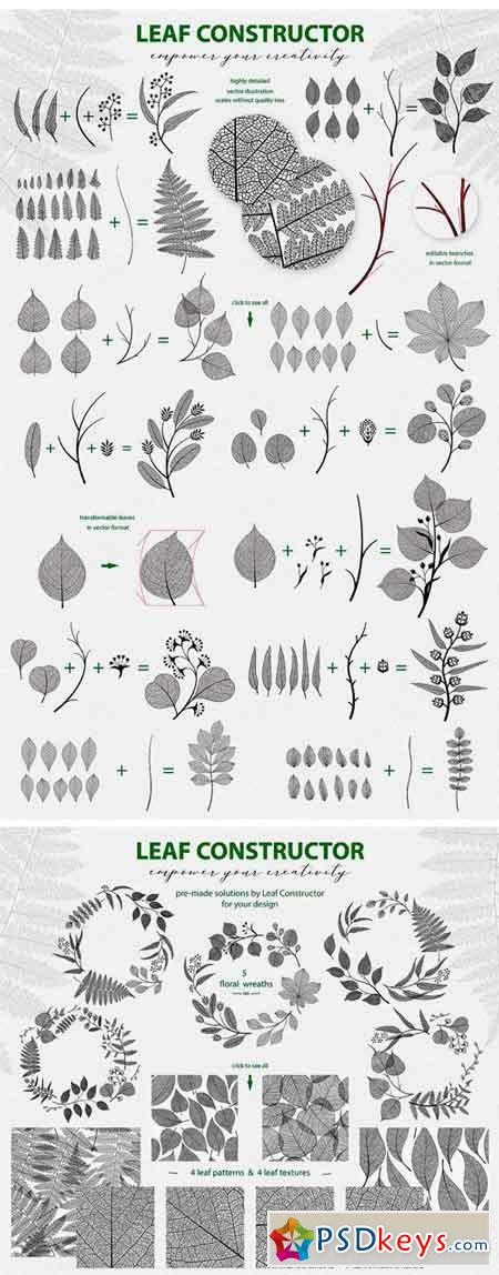 Leaf Collection 2053452