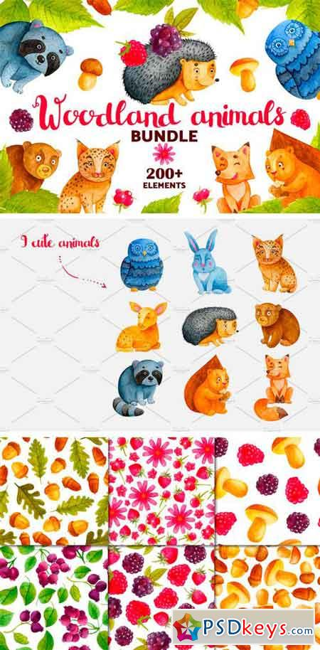 Woodland Animals. Watercolor Bundle 2052332