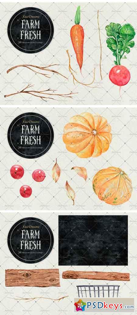 Farm Fresh Watercolor Clipart 2038066
