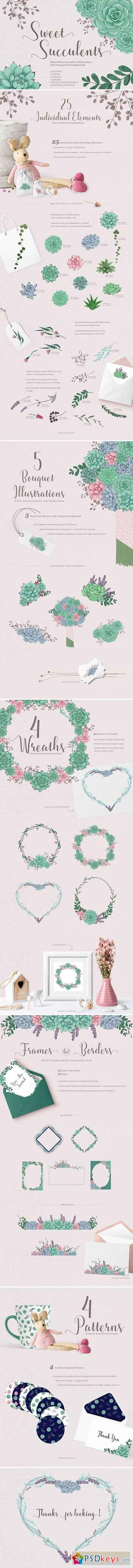 Sweet Succulents Design Set 2072238