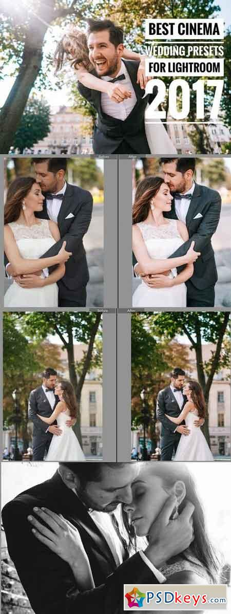 Best Wedding Cinema Presets LR 2017 1858353