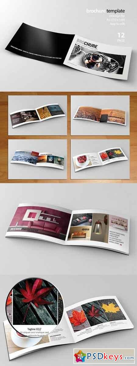 Indesign Brochure 310213