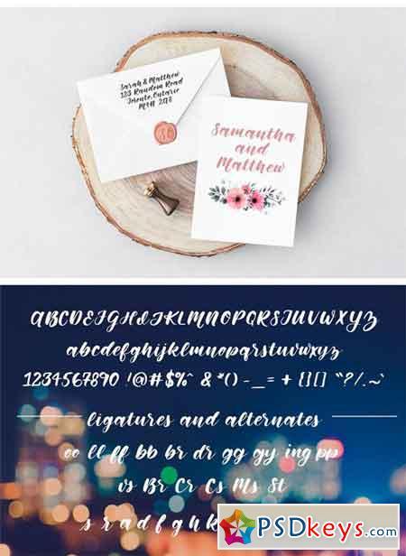 Memphis Park Script Font 2174224