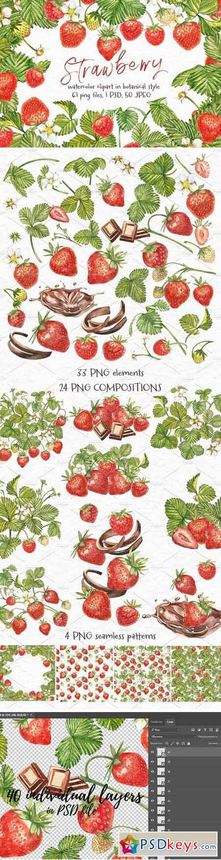 Strawberry illustrations 2078355