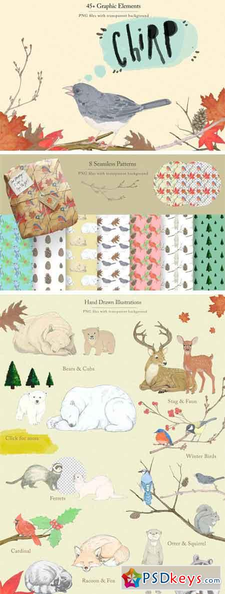 Winter Animals & Graphic Set 2148952