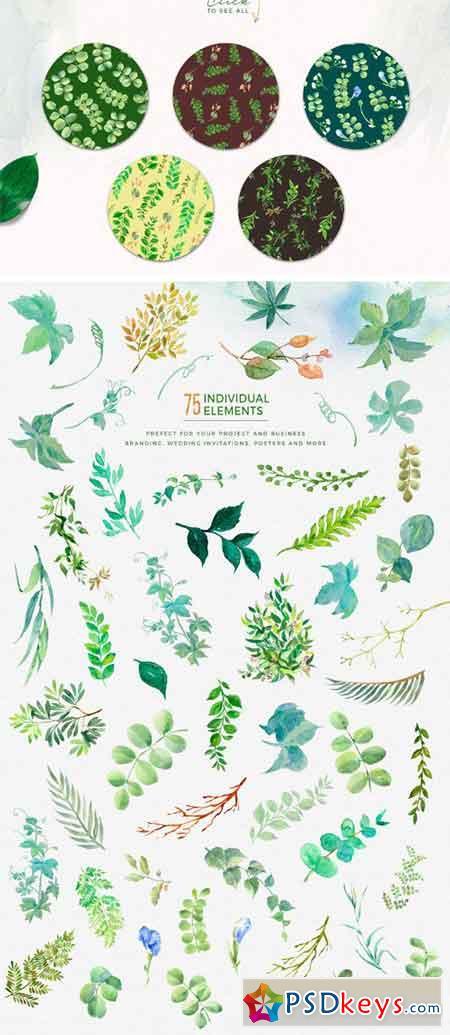 Watercolor Green Leaf Clip Art 2193456