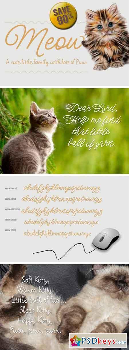 Meow Script Family 2182380